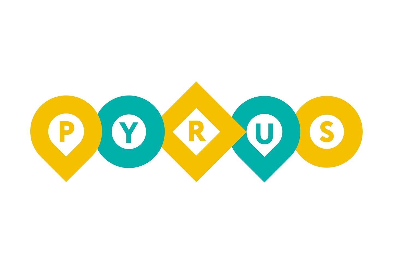 Фирменный стиль компании для Pyrus